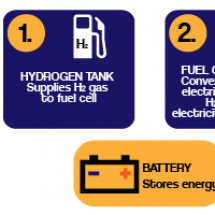 Hydrogen Fuel Cell Diagram Infographic