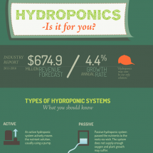 Hydroponics Infographic