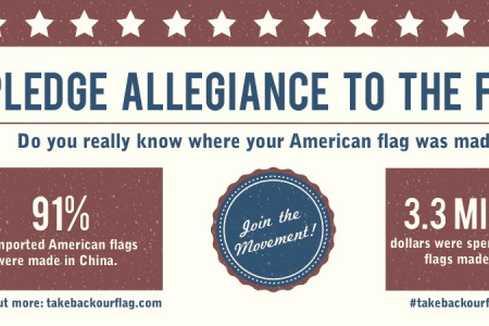I Pledge Allegiance to the Flag Infographic