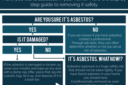 I Think I found Asbestos? Infographic