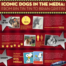 Iconic Dogs in the Media Infographic