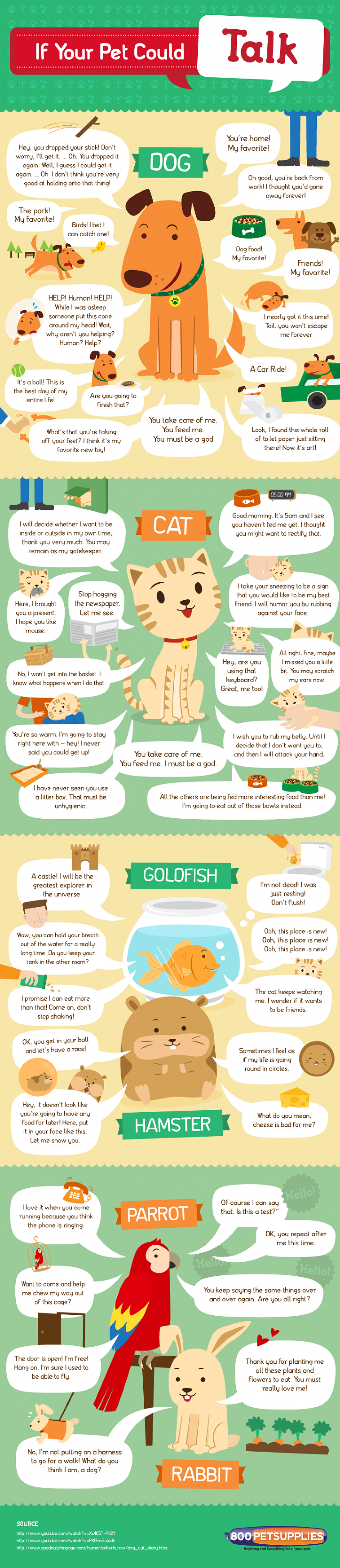 If Your Pet Could Talk Infographic