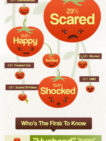 I'm Pregnant! - Moms' Reactions to the News Infographic