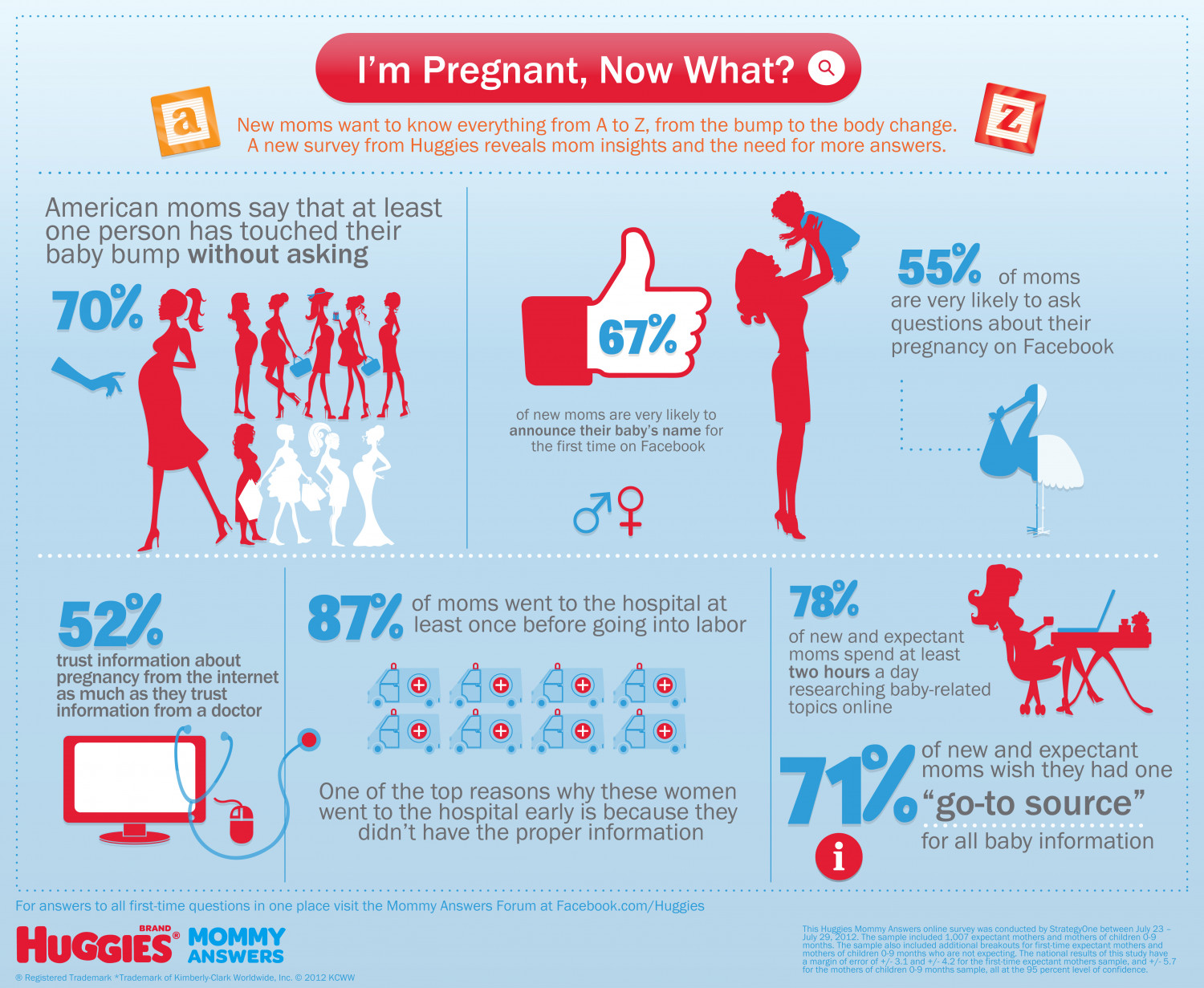 I'm Pregnant, Now What? Infographic