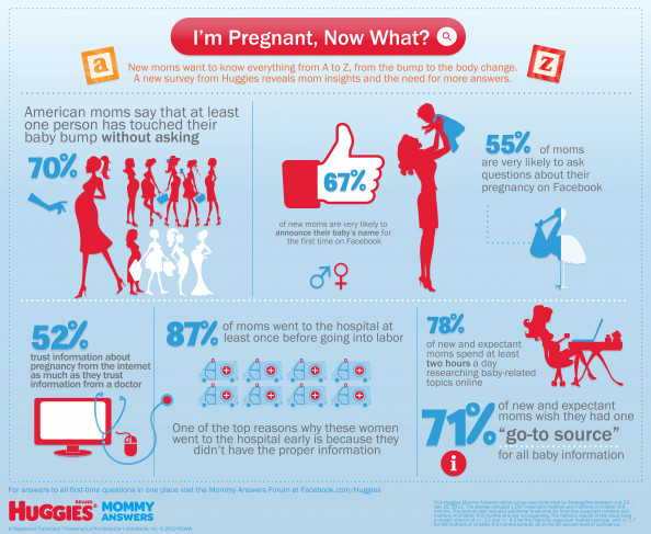 I&#039;m Pregnant, Now What? Infographic