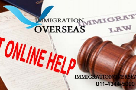 Immigration Overseas: With Satisfaction Immigration Services for Clients Infographic