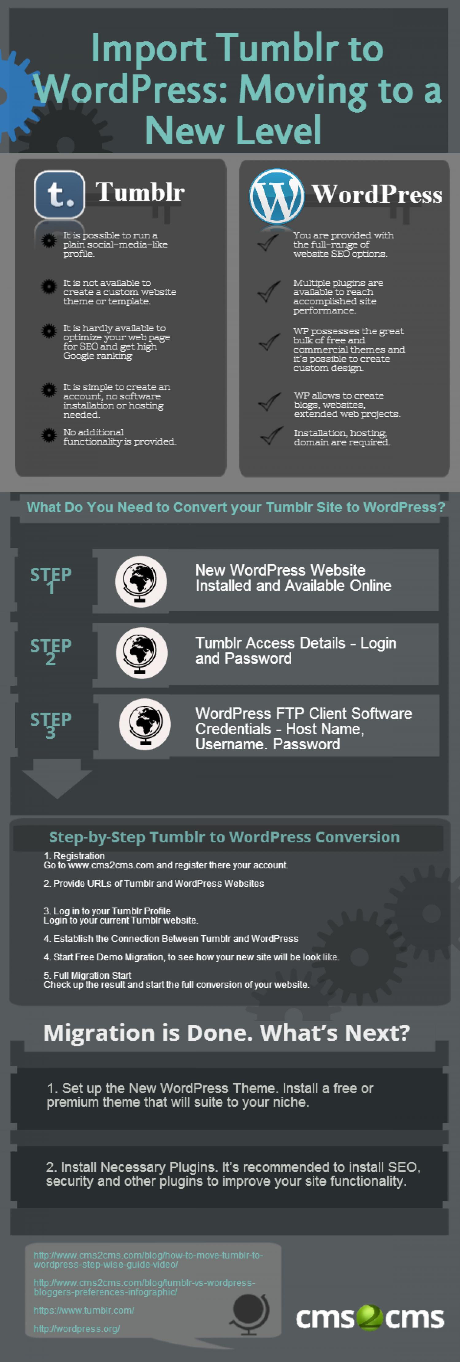 Import Tumblr to WordPress: Moving to a New Level Infographic