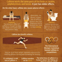 Important Facts About Caffeine Infographic