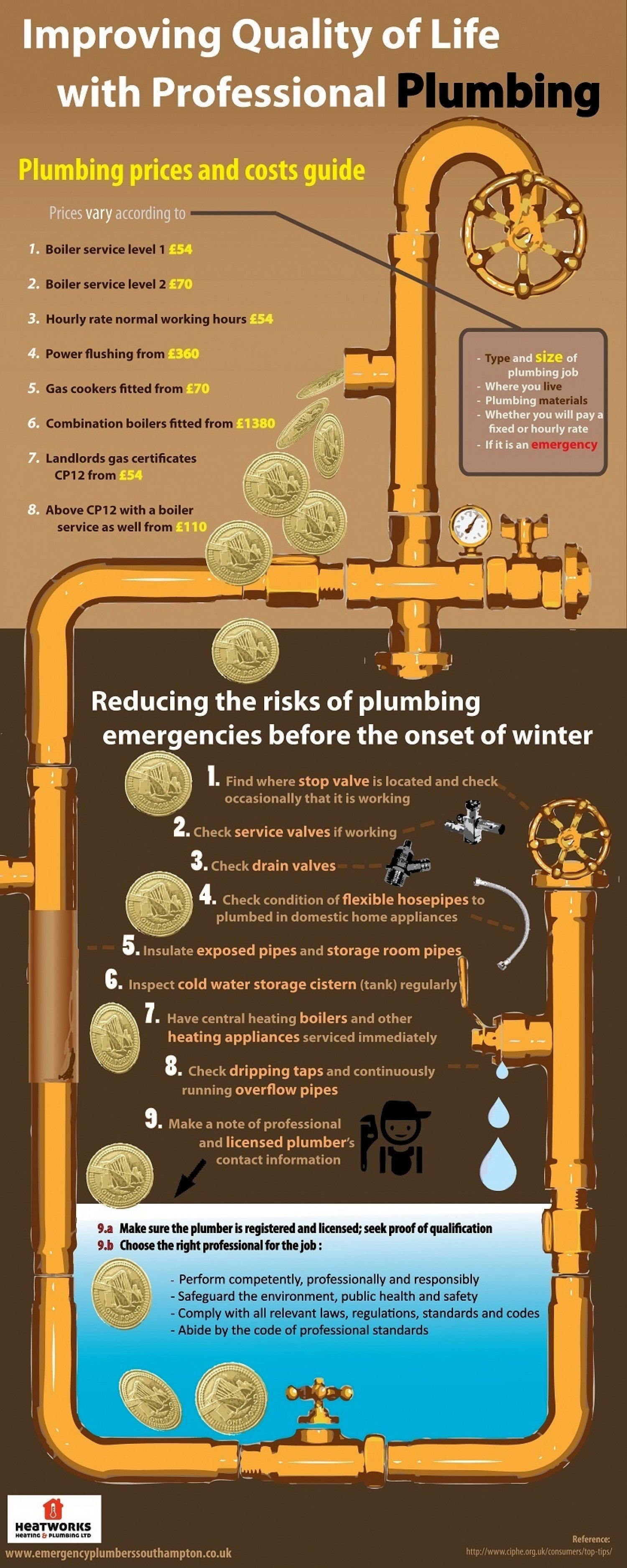 Improving Quality of Life with Professional Plumbing Infographic
