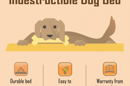 Indestructible Dog Bed Infographic