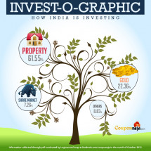 Indian Investment Plan 2012 Revealed Infographic