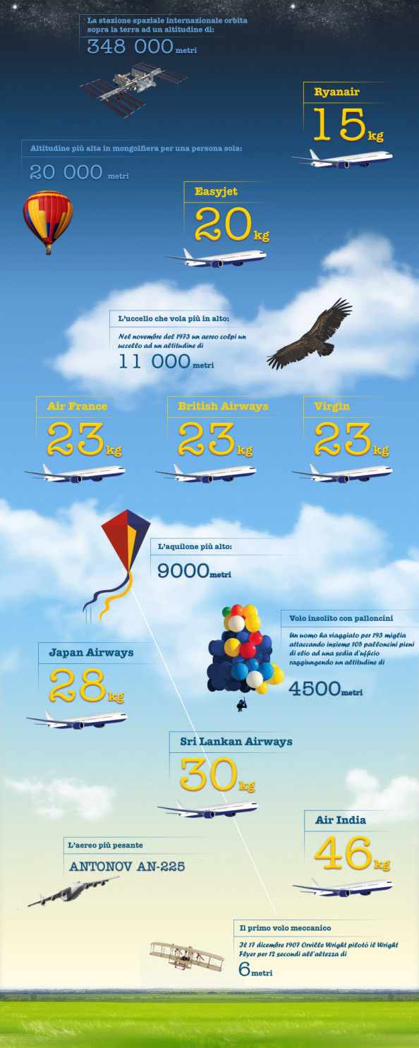 Infografia Bagagli Compagnie Aeree Infographic