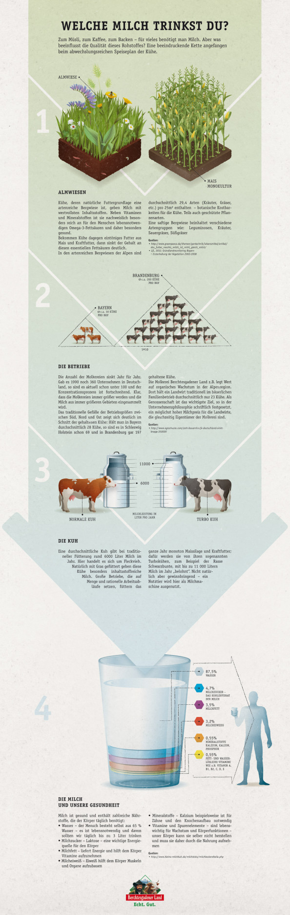 Infografik // Welche Milch trinkst du?  Infographic
