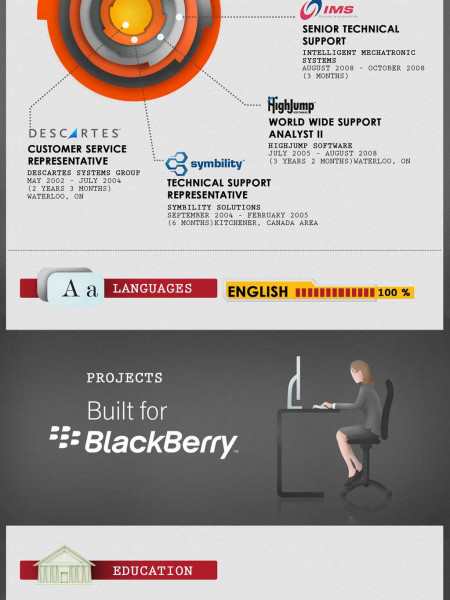 Resume of Project Manager  Infographic