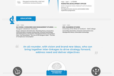 Infographic Resume Template - Classic Corporate Infographic
