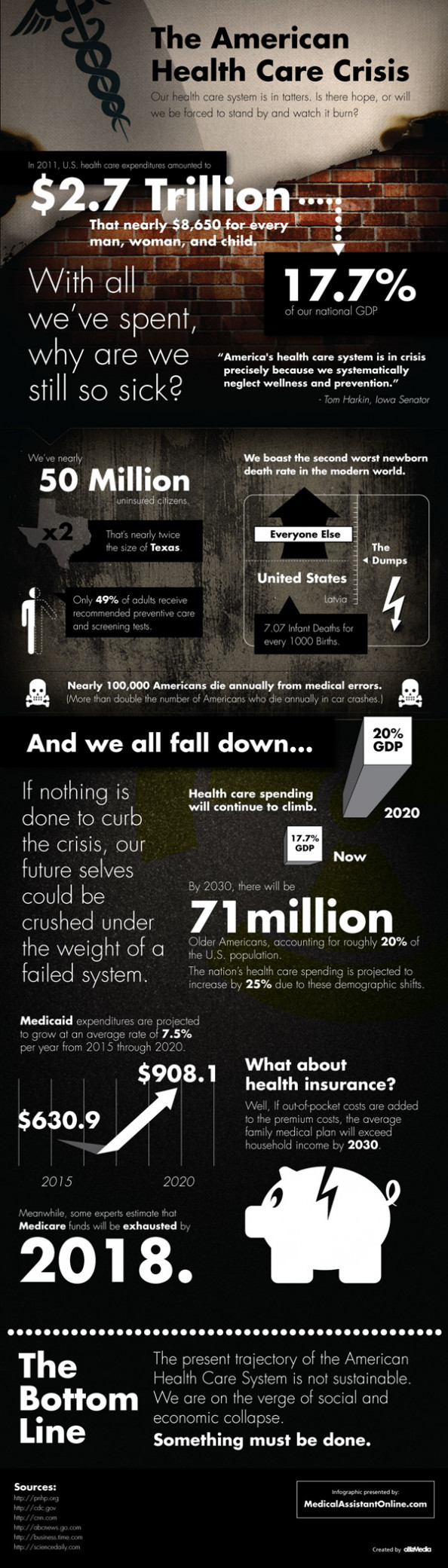 The American Healthcare Crisis Infographic