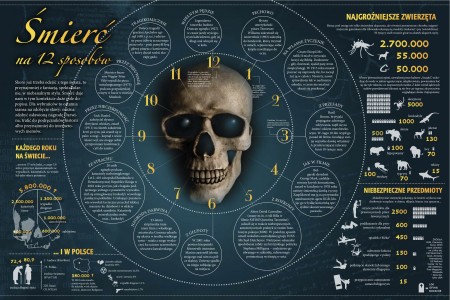 Infographics: Unusual deaths statistics Infographic