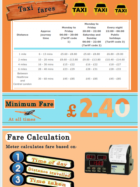 Brief Information on Taxi and Minicabs Infographic