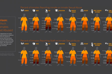 Inmate Abuse Infographic