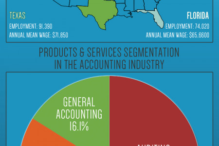 Inside the Accounting Industry Infographic
