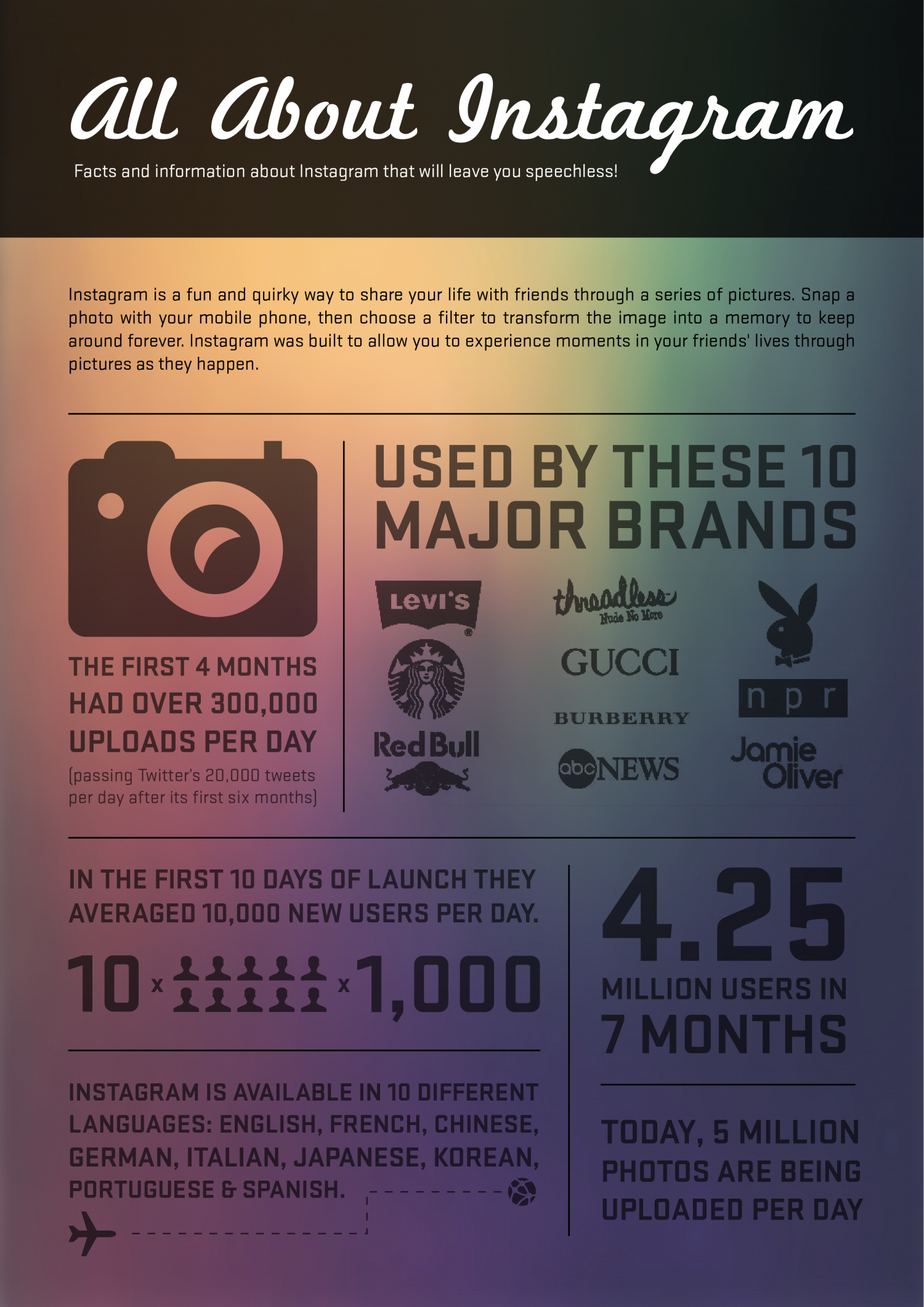 Instagram Graphic Infographic