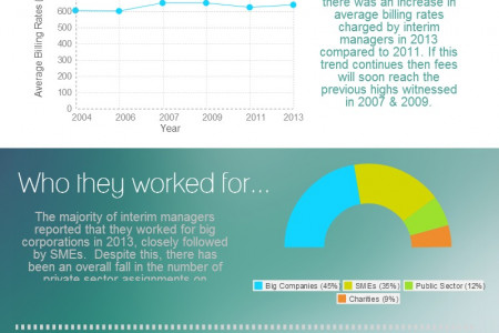 Interim Management in 2013 Infographic