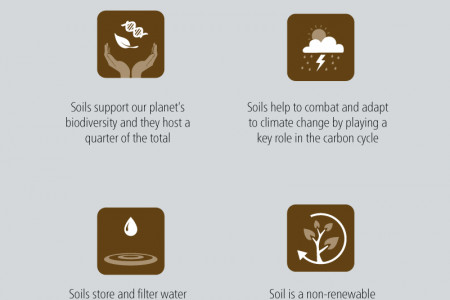 International Year of Soils 2015: Healthy soils for a healthy life Infographic