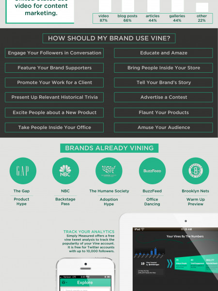 Introducing Vine Infographic