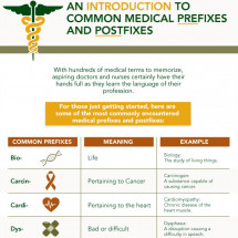 Introduction to Common Medical Prefixes and Postfixes Infographic