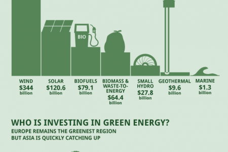 Investing in Green Infographic
