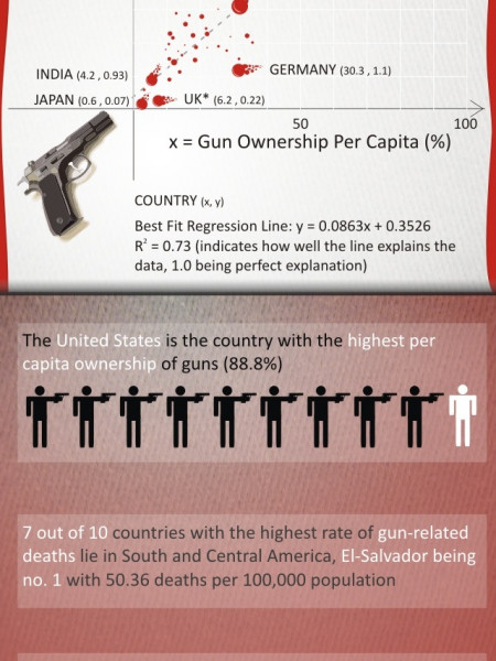 Is Gun Control Effective? Infographic