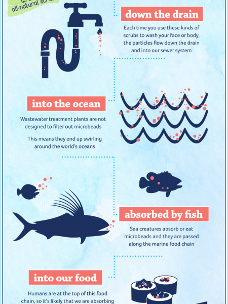 Scrub'em Out Microbeads Infographic
