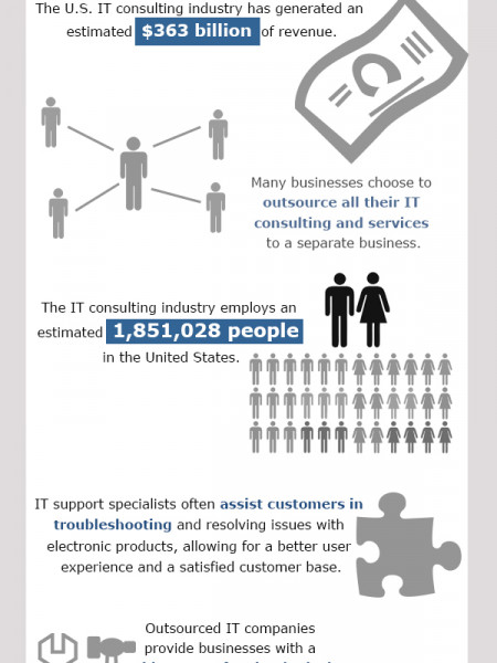 Facts About IT Consulting Infographic