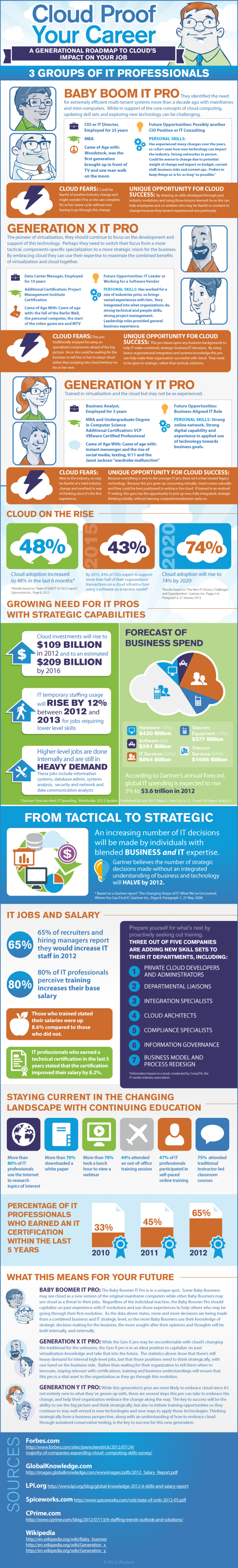 IT Guy: Adapting to the Cloud Infographic