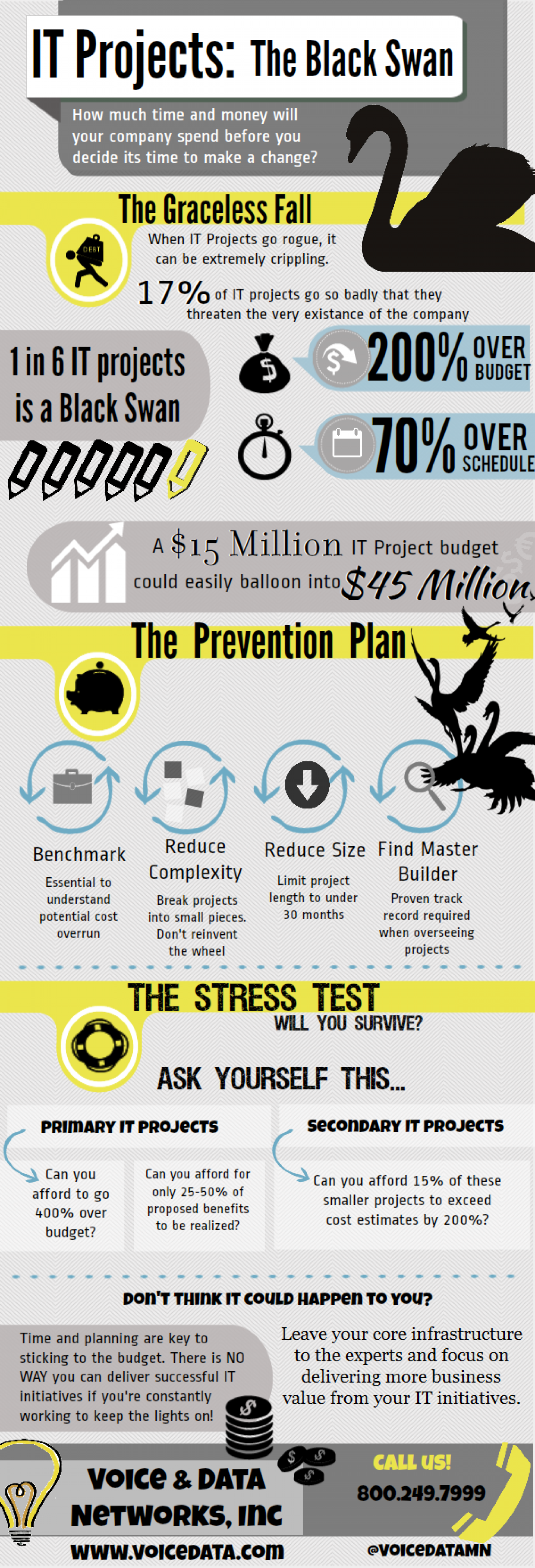 IT Projects: The Black Swan Infographic