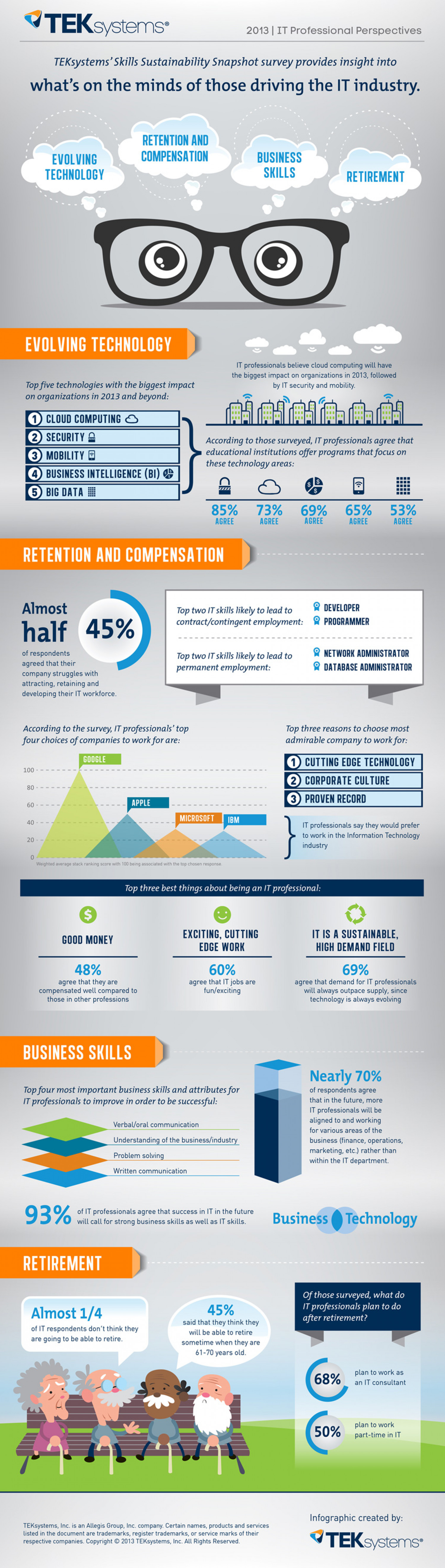 IT Skills Sustainability Snapshot 2013 Infographic