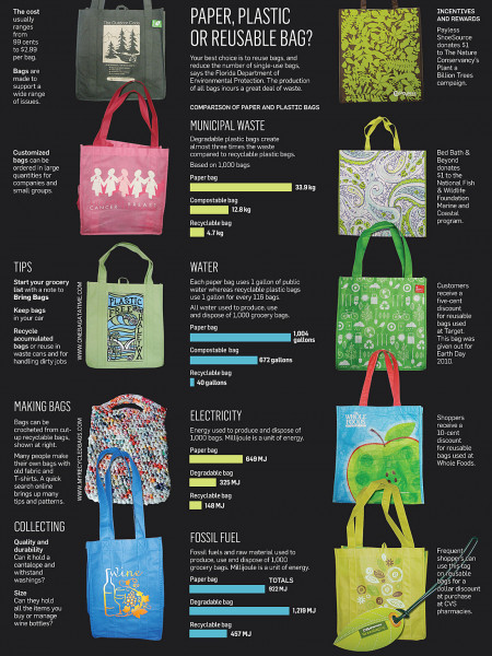 It's All in the Bag Infographic