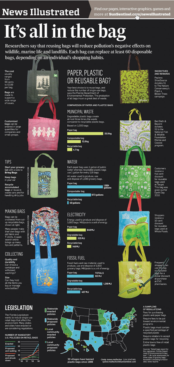 It&#039;s All in the Bag Infographic