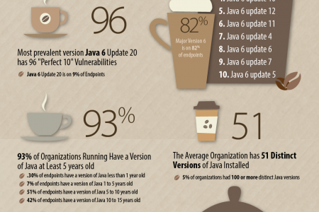 Java Vulnerabilites: Write Once, Pwn Anywhere Infographic