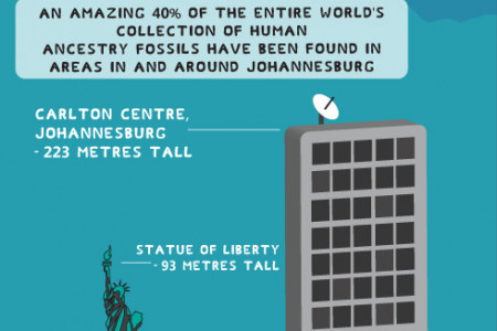 Johannesburg: Things to Know and Places to Go Infographic