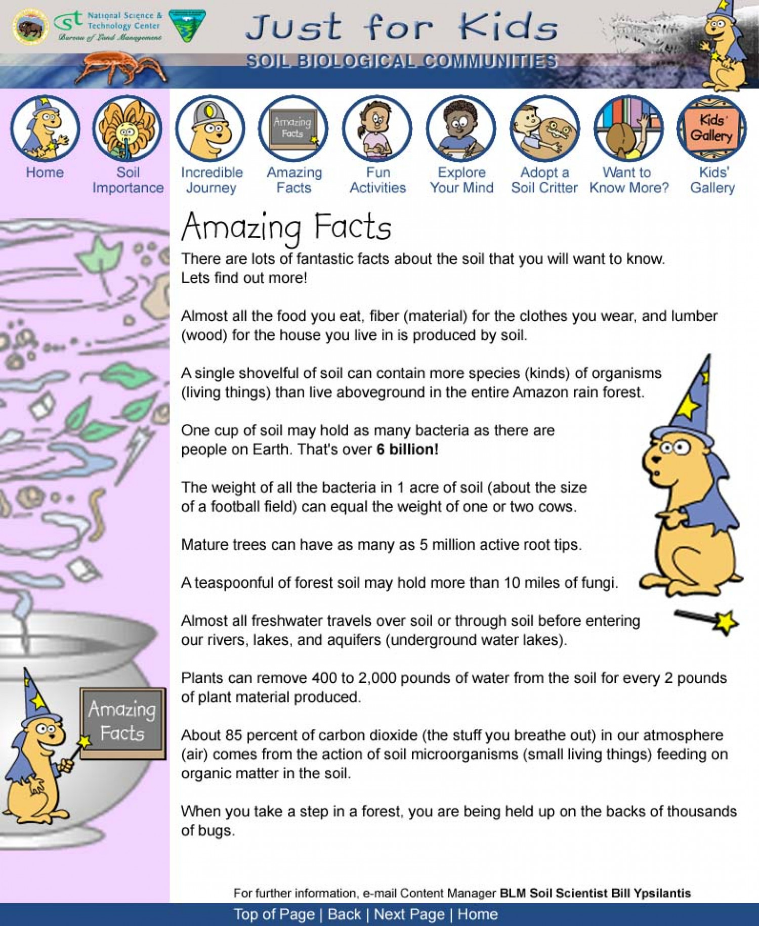 Just For Kids: Amazing Facts Infographic