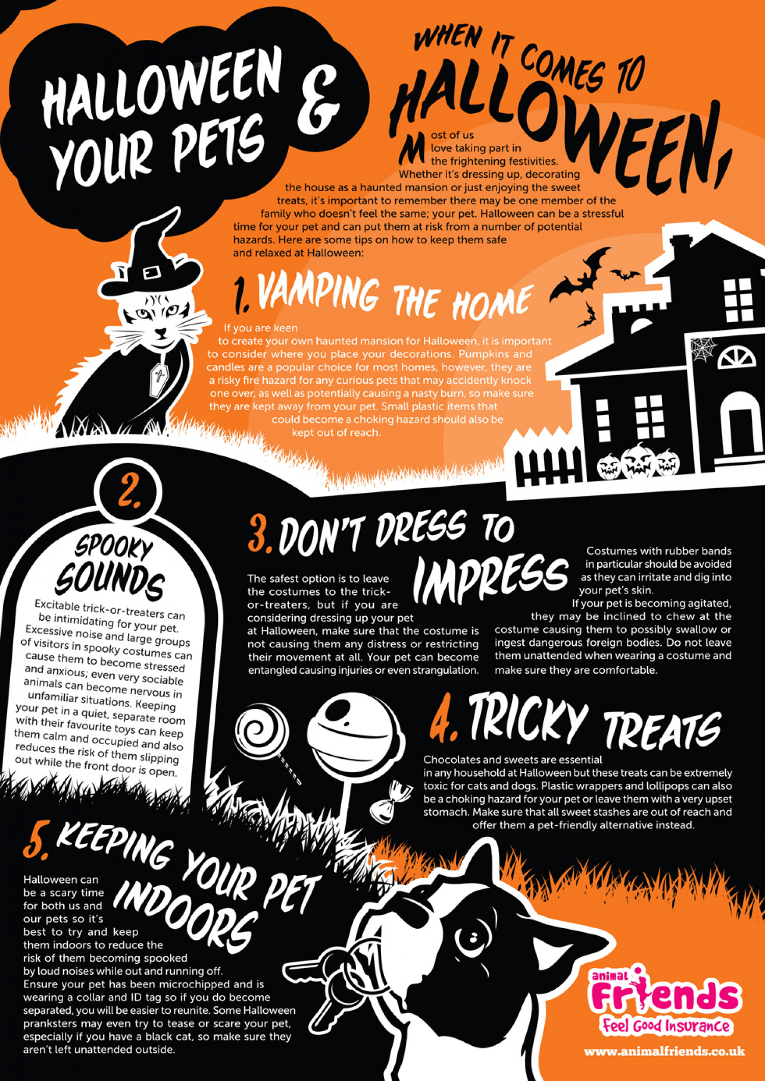 Keeping Your Pet Safe at Halloween Infographic