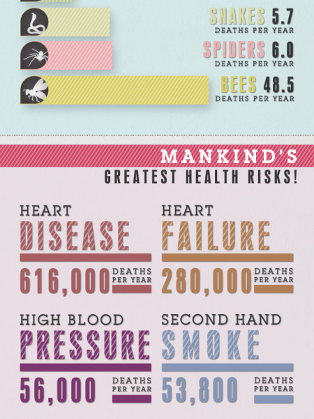 Killer Bees VS. Killer Cheese: What's More Hazardous To Your Health?  Infographic