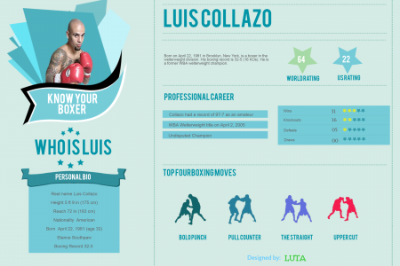 Know Your Boxer Infographic