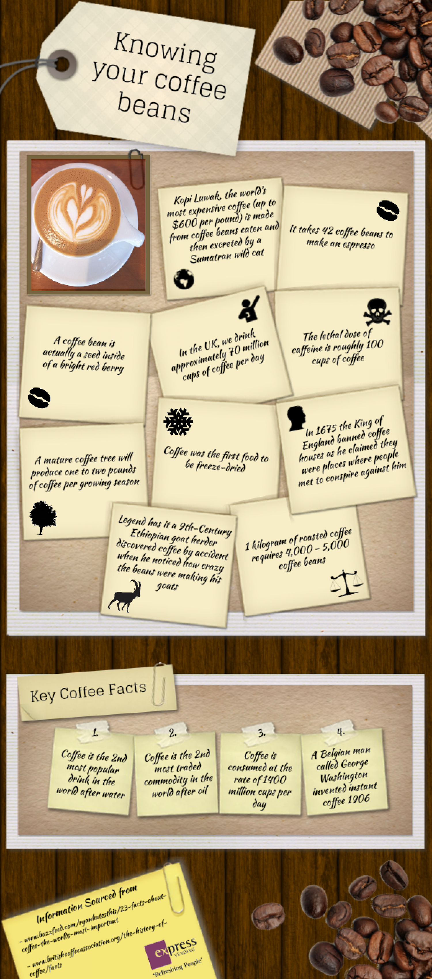 Knowing your coffee Beans Infographic