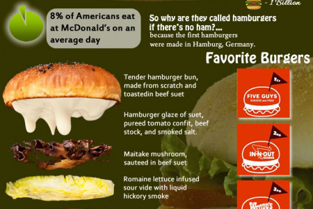 Learn about Burger Infographic