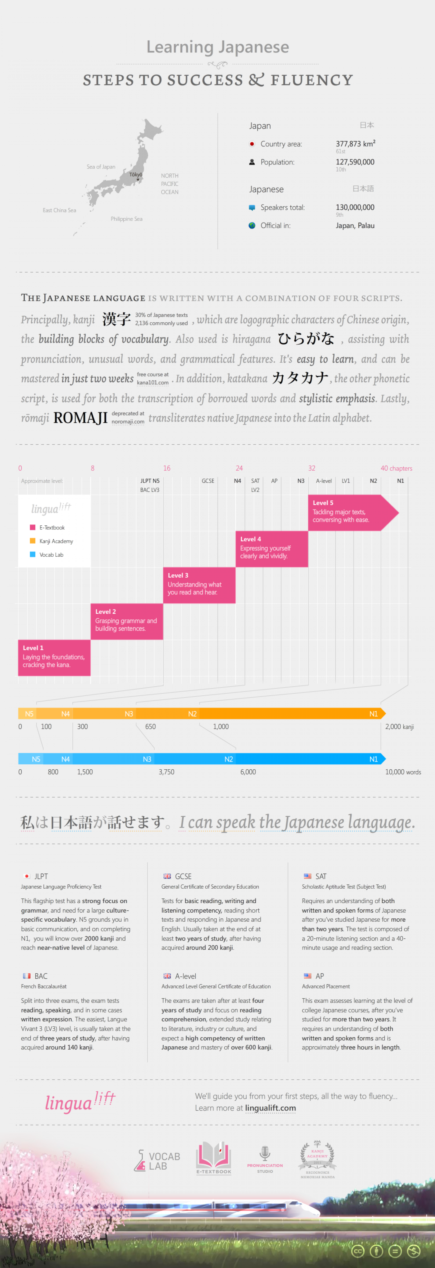 Learning Japanese: Steps to success & fluency Infographic