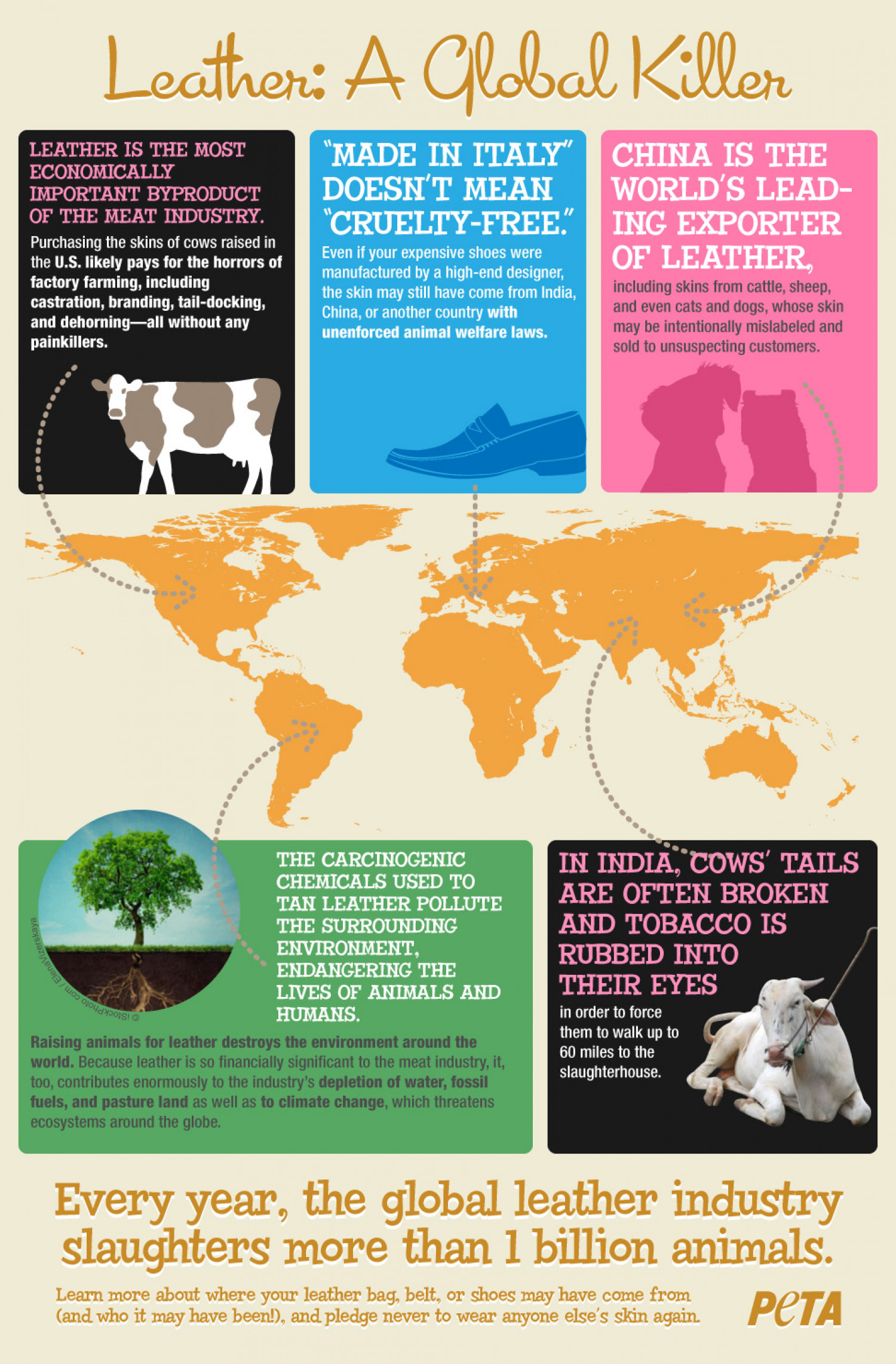 Leather: A Global Killer Infographic