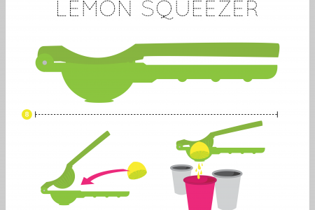 Lemon Squeezer Infographic
