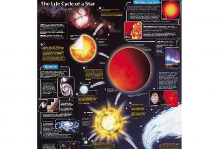 Life Cycle of a Star Infographic